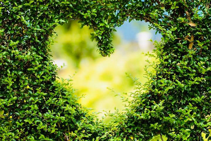Ouvrir son cœur aux esprits de la nature